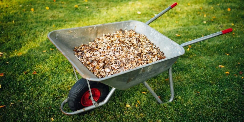 wood chips in a wheelbarrow for spreading around the landscape