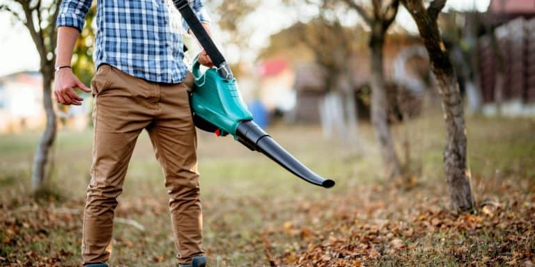 Battery Leaf Blower
